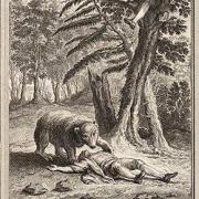 La fontaine l ours et les deux compagnons